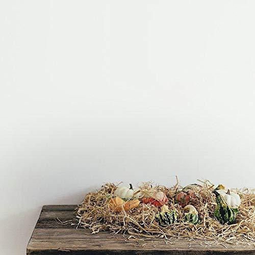 White Wall Pumpkin ()