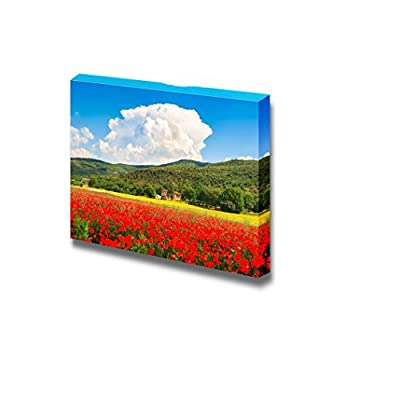 Fascinating Visual, Professional Creation, Beautiful Landscape with Field of red Poppy Flowers and Traditional Farm House in Monteriggioni Tuscany Italy Wall Decor