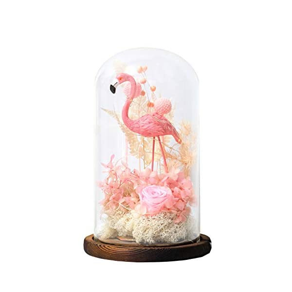 Snowkingdom-Beauty-and-The-Beast-Inspired-Red-Rose-Flower-LED-Light-with-Fallen-Petals-in-a-Glass-Dome-on-a-Wooden-Base