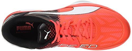 Puma Adulte Evospeed Chaussures White Blast 5 Black Red Mixte Fitness Indoor de 3 Rouge Mehrfarbig rr8wq1