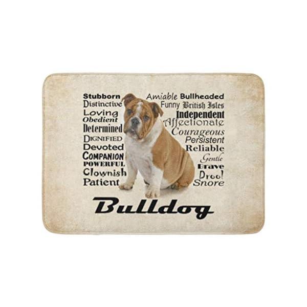 "Allenava Bath Mat English Bulldog Traits Puppy Dog Pet Animal Bathroom Decor Rug 16"" x 24"" 1"