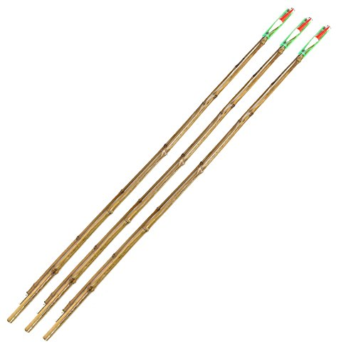 BambooMN 6.5 Ft 2 Piece Natural Bamboo Vintage Cane Fishing Pole with Bobber, Hook, Line and Sinker, 3 Sets (Vintage Fishing Pole)