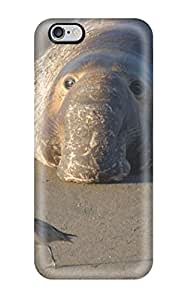 Hot New Other Case Cover For Iphone 6 Plus With Perfect Design