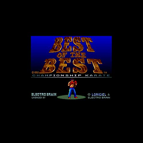 Best Of The Best - Championship Karate Ntsc Version 16 Bit 46 Pin Big Gray Game Card For Usa Game Players (Best Of The Best Championship Karate)