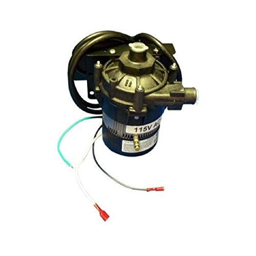 (Sundance Spas Circulation Pump, E-10-NSHN1W-19 120V)