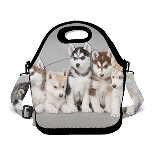 POP MKYTH Soft Neoprene Dogs Husky Insulated Lightweight Lunch Box Bag Lunch Tote Bag Picnic Bags, Perfect Halloween for Kids Boys Girls