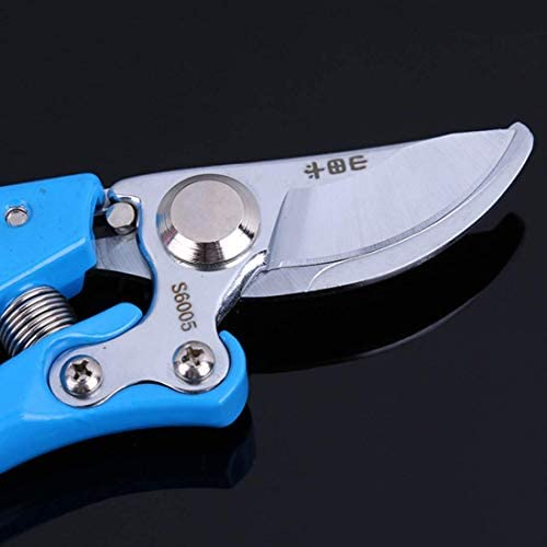 DSHUJC Pruning Shears Gardening Hand Snips with Precision Blades Pruner Scissors Supplies Greening Tools for Orchard Garden (Color : Blue)