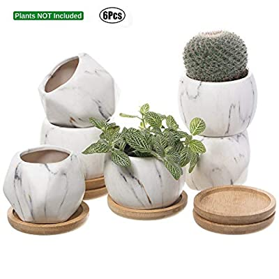 T4U 2.5 Inch Succulent Garden Pot with Bamboo Tray, Small Ceramic Windowsill Plant Pot Cactus Herb Planter for Home and Office Decoration Birthday Wedding Christmas Gift Pack of 6: Garden & Outdoor