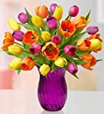 1800Flowers Assorted Tulips Fresh Flower Double