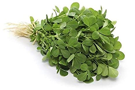 LIVE GREEN Fenugreek (Methi Saag) Organic F1 Hybrid Seeds with Germination:  Amazon.in: Garden & Outdoors