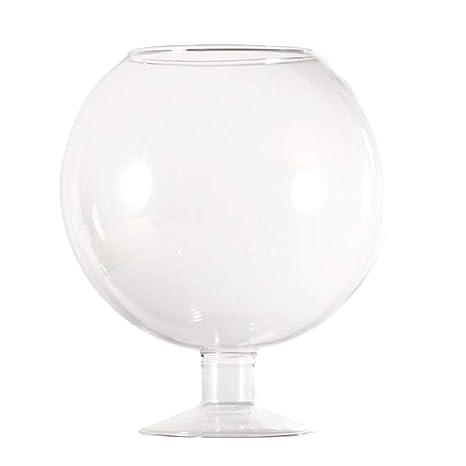 B Blesiya Pecera Transparente de Vidrio Moderno Jarrón Hidropónico Macetero Forma de Copa de Vino