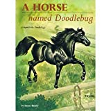 img - for Horse Named Doodlebug book / textbook / text book