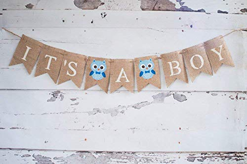 Owl It's A Boy Banner for Baby Shower or Gender Reveal Party Decorations ()