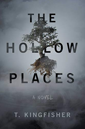 Book Cover: The Hollow Places: A Novel