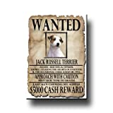 Jack Russell Terrier Wanted Fridge Magnet