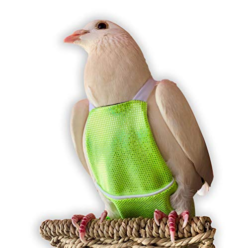 Bev's Bird Boutique – Green Sparkle Flyper (Open-Back Design)