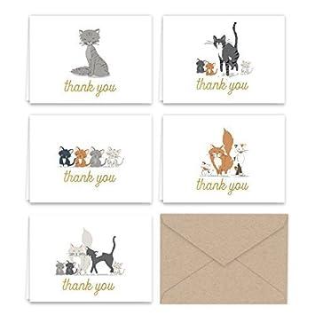 Amazon.com: Papel Frenzy gatitos y gatos gracias tarjeta de ...