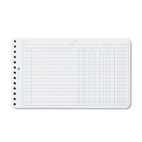Wilson Jones - Extra Sheets for Six-Ring Ledger Binder, 100/Pack 758-50 (DMi PK