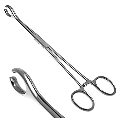 "Surgical Steel Body Piercing Sponge Forceps Tool Size 7"" (180 mm)"