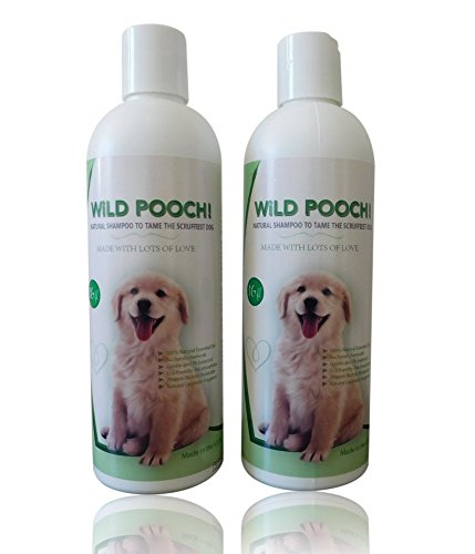 2 Bottles of Natural Dog Shampoo and Bath Brush. Gentle Pet Shampoo With Natural Oils, WILD POOCH!