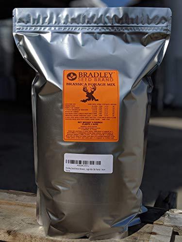 Bradley Seed Brand Brassica Forage Mix 5lb Plants 1 Acre