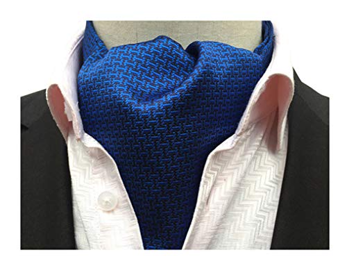 Secdtie Men's Dark Blue Patterned Silk Cravat Woven Ascot Gentlemen Neckties 11 ()