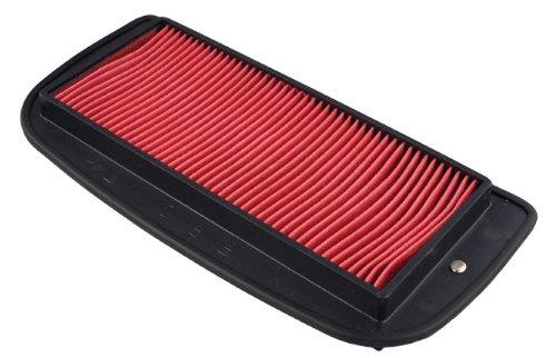 Hiflofiltro HFA4916 Premium OE Replacement Air Filter ()