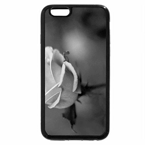 iPhone 6S Plus Case, iPhone 6 Plus Case (Black & White) - ROSES IN NATURE