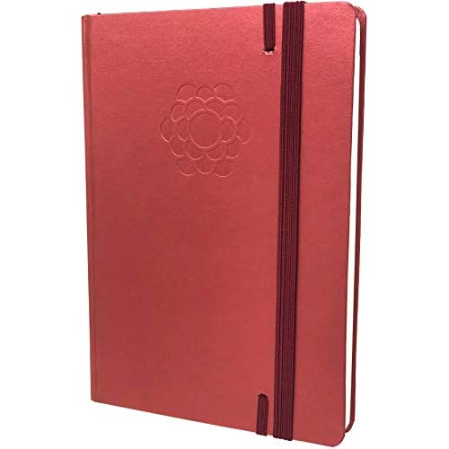 The Ultimate Bullet Planner - Daily & Weekly Agenda Planner, Organizer, Monthly Calendar - Boost Productivity & Hit Your Goals in 2019 - Extra 67 Dotted Pages - 30 Weeks - A5 Size - Diamond Red