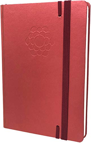 The Ultimate Agenda & Daily Planner to Boost Productivity, Hit Your Goals in 2019 - Goal Setting Journal - Personal Weekly Planner, Organizer - Undated,Red