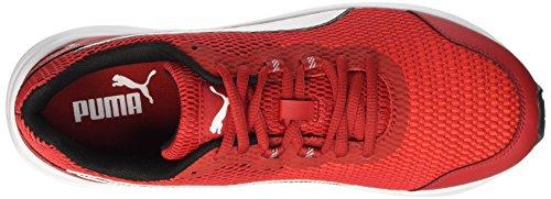 Puma Descendant V4 - Zapatillas de running Unisex adulto Barbados Cherry/Bianco/Nero