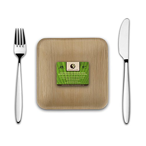 Disposable Eco Palm Paper Plates: Square Compostable Biodegradable Heavy Duty Small Salad, Hors D'oeuvres Appetizer, Dessert Party Plate - Comparable to Bamboo Wood Fiber Plant Based Dishware: 25 Pack
