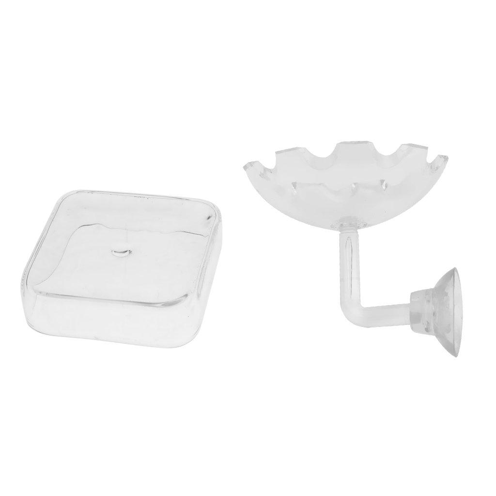 B Blesiya Set of 2, High Quality Transparent Shrimp Feeding Food Tray Feeder for Aquarium Fish Tank, 1x Square Bowl 60x60mm (DxH), 1x Flower Bowl 60x50mm (Dia. x H)