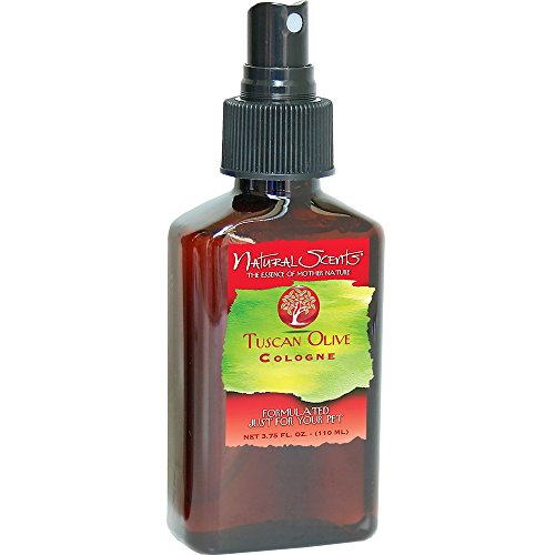 Natural Scentsreg; Tuscan Olive Cologne (3.75 oz) by Natural Scent