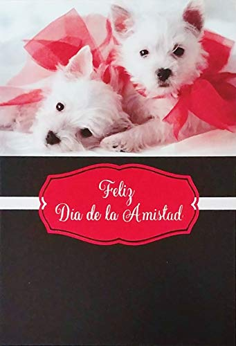 Feliz Dia de la Amistad - Happy Friendship Day Greeting Card in Spanish Espanol - Amigo Amiga Friend