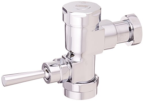 Flush Exposed 1 Manual Valves (American Standard 6047.525.002 Exposed Manual Flowise 1.28 Gpf Toilet Bowl Flush Valve Only for Retrofit, Polished Chrome)
