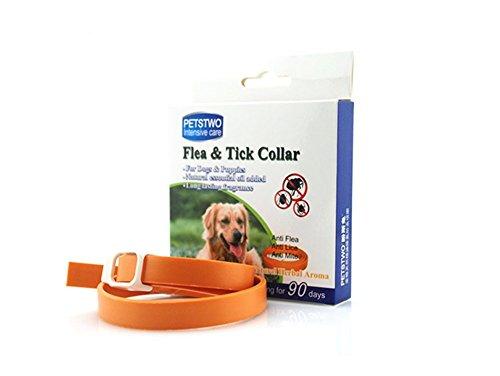 90 Day Tick Collar - 6