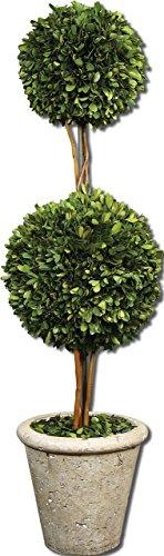 Globe Preserved Boxwood Uttermost (Double Ball Topiary Pot | Preserved Boxwood Greenery Round Globe)