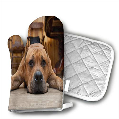 QEDGC Brown Dog Oven Mitts for Kitchen Heat Resistant, Oven