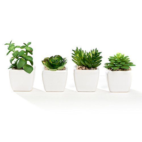 Nattol Modern Mini Artificial Succulent Plants Potted in Cube-Shape White Ceramic Pots for Home Decor, Set of 4 (White Artificial Pot)