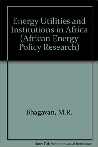 Energy Utilities and Institutions in Africa (African Energy Policy Research)