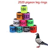 Qingsi 100 Pcs Aluminum Bird Rings Leg Bands Racing Pigeon Foot Ring for Pigeon Parrot Finch Canary Hatch Poultry Rings,Color Random