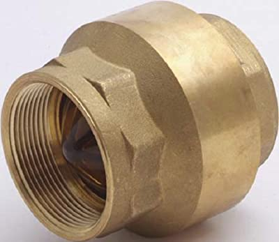 """1"""" FNPT In-Line Check Valves from Cash Acme"""