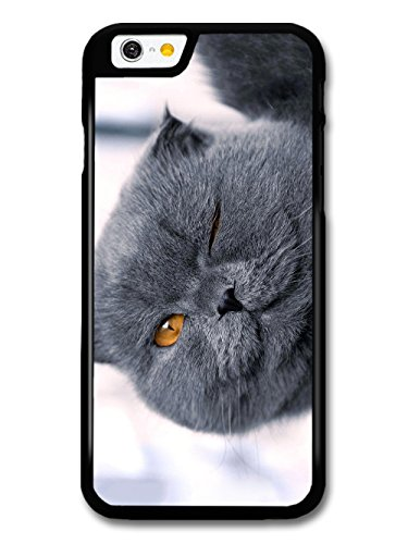 Cute Cool Funny Winking Cat British Blue Design case for iPhone 6 6S