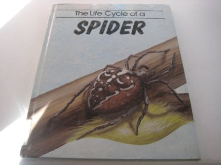 The Life Cycle of a Spider (Life Cycles)