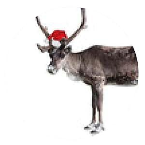 alfombrilla de ratón renos liberado con sombrero de Santa - ronda - 20cm