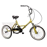 Best Adult Tricycles - Hiram Adult Tricycle Trike Cruise Bike Three-Wheeled Bicycle Review