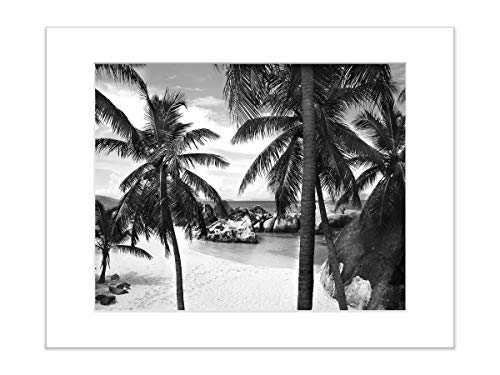 Black and White Beach Photo Tropical Palm Tree Coastal 5x7 Inch Matted Print
