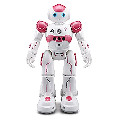 ZMZS CADY WINI and YH Intelligent Programming Gesture Control Robot RC Toy Gift for Children Kids Entertainment