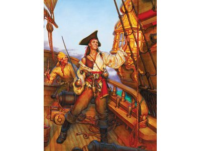 Pirate`s Life Boxed Puzzle - Pirates Aboard